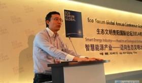 刘东:中国智慧能源标准将引领产业变革