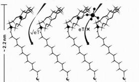 铬电化学检测方法获进展